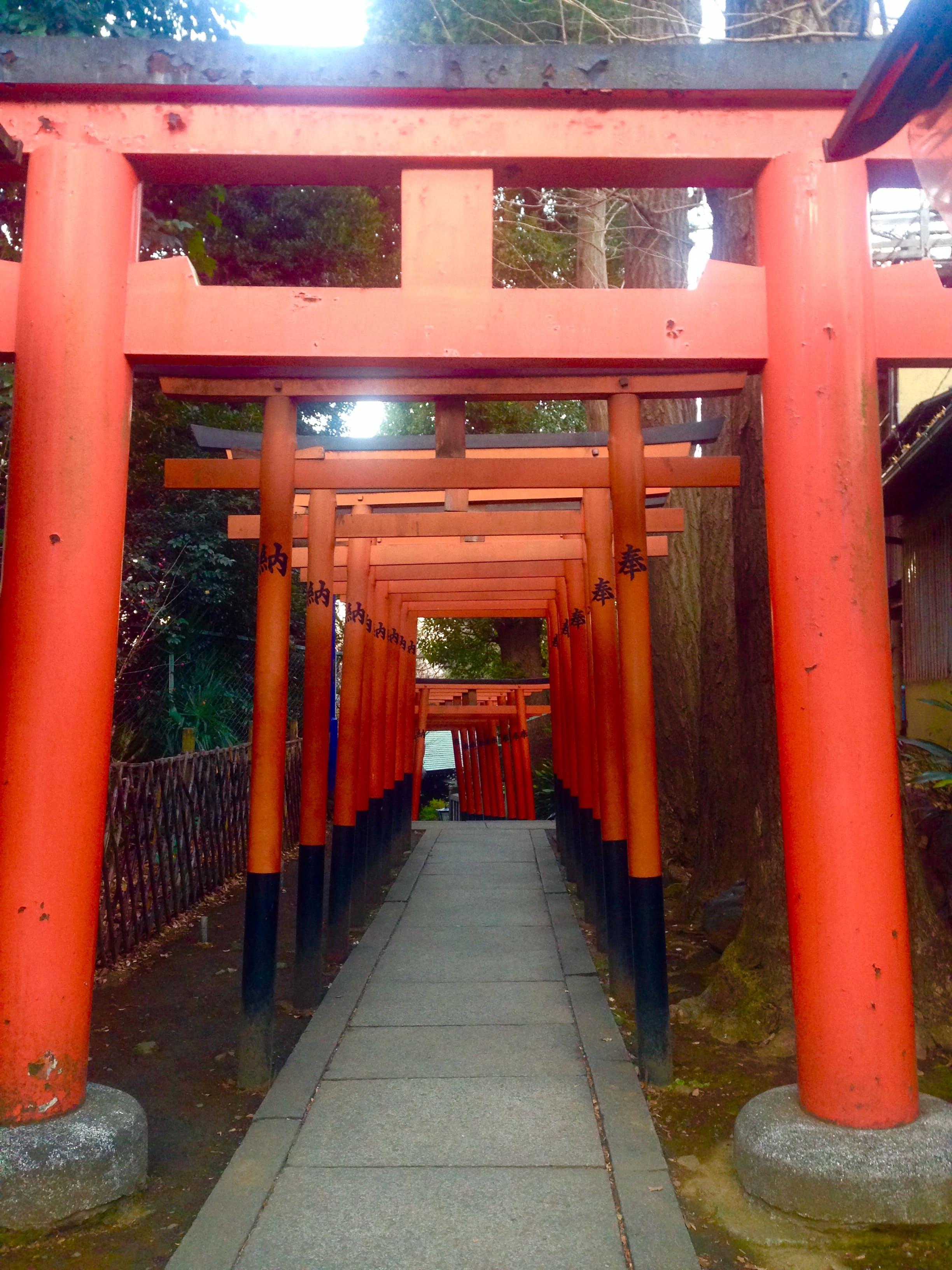 上野公園・花園神社